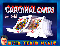 yedid-cardinalcards