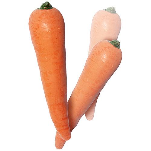 carrott