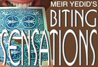 BitingSensation